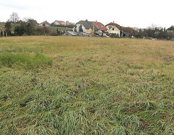 Přírodní koupaliště vyroste na pozemcích bývalého zahradnictví uSvatoňů, mezi dolním a horním Sezimovo Ústím