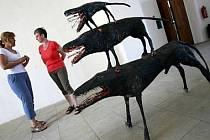 Dle občanského zákoníku mají kraje a města za předměty darované muzeu platit daň