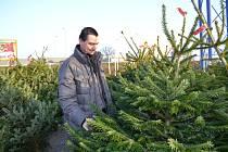 Vánoční stromek vybíral i Jan Rychetník z Tábora.