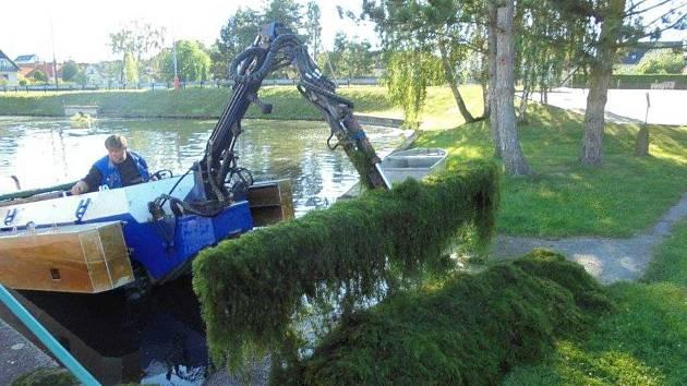K mechanickému odstranění drtivé většiny biomasy došlo za pomoci obojživelného vozidla.