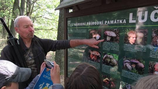 1) Národní přírodní památka Luční se nachází na 300 metrové hrázi stejnojmenného rybníka a vyhlášena byla v roce 1988, od té doby ji spravuji, letos oslavila 31 výročí. Když jsem houby studoval, tak jsem je zkoušel i zalévat. Měřil jsem kolik vyrostou cen