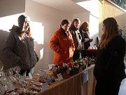 Návštěvníci se na festivalu řemesel v Mladé Vožici nejvíce zastavovali u stánků s vánoční výzdobou.