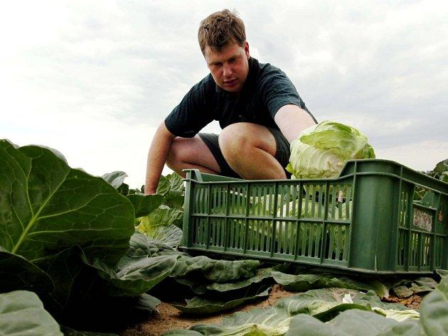 Obyvatelé obcí musejí obvykle dojíždět za zaměstnáním do měst. Řada z nich ale pracuje v zemědělství.