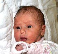 ADÉLA ŠEDLBAUEROVÁ Z PLANÉ NAD LUŽNICÍ. Narodila se 4. ledna v 8.07 hodin. Vážila 2370 g, měřila 45 cm a má dvouletou sestřičku Julinku .