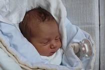 ANETA CHROMÍKOVÁ Z CHLEBOVA. Narodila se 17. listopadu ve 2 hodiny s váhou 3120 g  a mírou 48 cm.  Doma na ni čeká  tříletý bráška Jan.