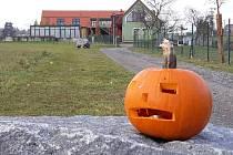 Halloween v ZOO Tábor.