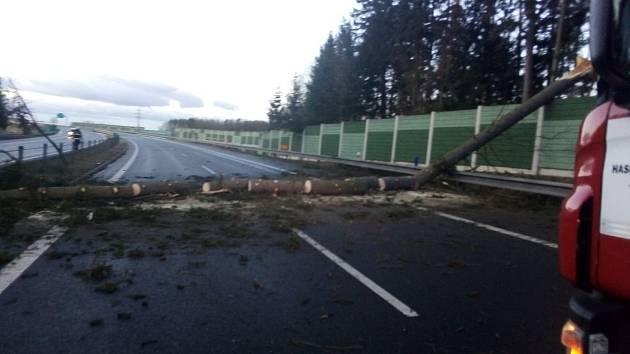 Strom omezil provoz na 83. kilometru dálnice D3 na Táborsku v úterý 11. února ráno.