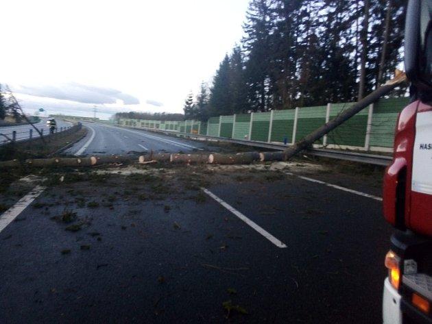 Strom omezil provoz na 83.kilometru dálnice D3 na Táborsku vúterý 11.února ráno.