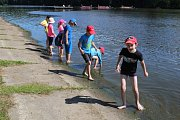 Pondělní závod dračích lodí na Knížecím rybníce v Táboře.