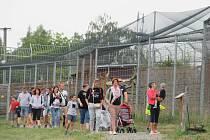 Zoo Tábor v místní části Větrovy nabízí zajímavý program pro rodiny s dětmi, nechybí ani komentovaná krmení.