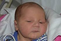 Adam Kopřiva z Tábora. Rodiče Aneta a David se svého prvorozeného syna dočkali 4. června přesně ve 12 hodin. Malý Adam vážil 3280 gramů a měřil rovných 50 cm.