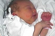 INA ELSTEROVÁ Z TÁBORA. Narodila se 30. září ve 12.14 hodin s váhou 2840 g a mírou 48 cm. Doma už má dvouletou sestřičku  Anitku.