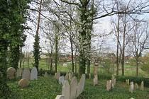 Židovský hřbitov Tučapy.