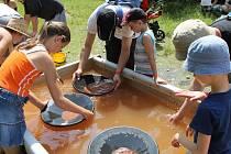 Na Otavu v sobotu zamíří rýžovníci zlata.