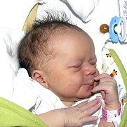 VIKTORIE PRAŽMOVÁ ZE ŽELČE. První dcera rodičů Alžběty a Jakuba se narodila 25. února v 10.51 hodin. Vážila 3490 g, měřila 50 cm.