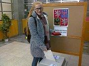 Volební místnost na úřadě v Soběslavi.