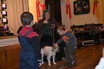 Kromě oslavy Nového roku Psa se ve Střelnici vybíralo také na invalidní vozík pro handicapovaného psa.