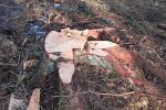 Stromy z neděle na pondělí padaly v Bojbukách, Turovci, Nadějkově, Dráchově, Veselí nad Lužnicí, Opařanech a u Košic. Na poli u Dlouhé Lhoty leží dokonce převrácená kazatelna.