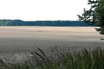 V této době už obilí na polích být nemělo. Přesto kombajny nemohou nastartovat motory, pole jsou podmáčená.