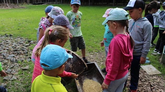703c14786bebe Děti z mateřské školy Hastrmánek vyšly do přírody - Táborský deník