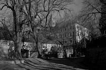 Z historie Radenína. Fotografie pochází z táborského atelieru Šechtl a Voseček. Zveřejňujeme je s laskavým svolením Marie Šechtlové.