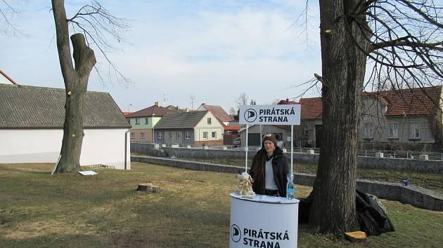 Piráti v Soběslavi na Promenádě hlídají stromy, na místě lze podepsat i petici Nechme stromy žít.