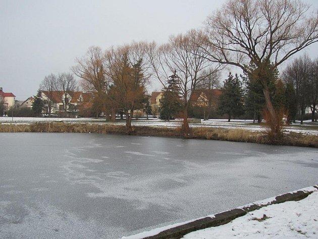 Rybník by mohl tvořit součást upraveného parku.