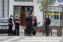 Demonstrace Hrad za hranou, republika v ohrožení v Soběslavi.