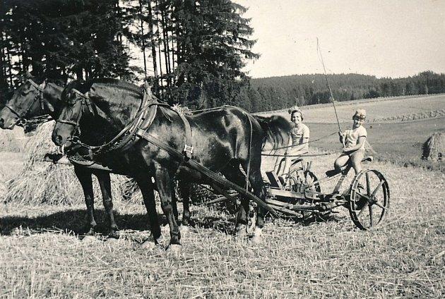 Marie Hladíková a Ladislav Pešek z Hartvíkova.
