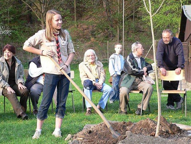 Táborští skauti zasadili strom.