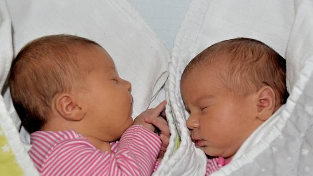 Madlen a Malvína Žákovských ze Soběslavi. První z dvojčátek přišla na svět 28. prosince 2018 v 8.12 hodin Madlen (vlevo) s váhou 3340 gramů a mírou 50 cm. O minutu později se narodila Malvína, která vážila 2950 gramů a měřila 44 cm.