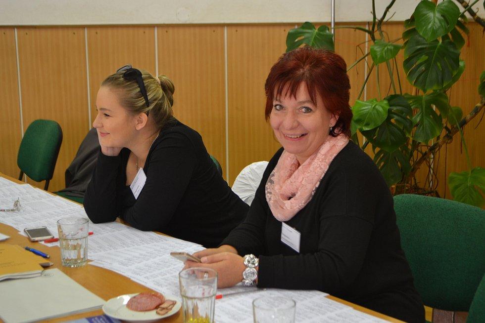 Mladá Vožice - volby do Evropského parlamentu.