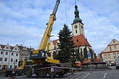 Usazování vánočního stromku na táborském Žižkově náměstí.