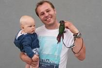 1) Šestatřicetiletý chovatel exotických ptáků, Milan Jarolímek, vyrůstal v rodině, která měla kladný vztah ke zvířatům. Jemu však učarovali cizokrajní ptáci. Koníčku, který začal klasickými andulkami, se věnuje už více než 15 let. V Táboře pořádá od loňsk