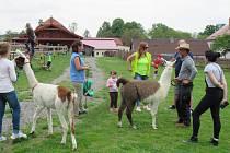 Farma nabízí zábavu pro děti i dospělé.
