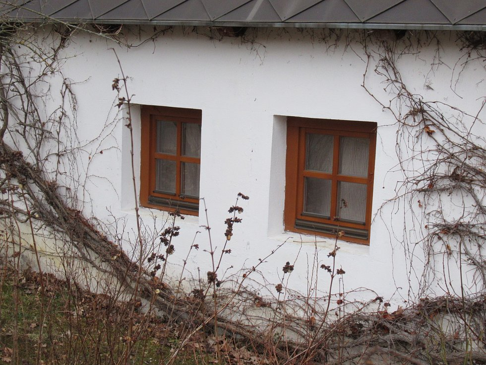 Mladý muž v domku u Návesního rybníka v Třebišti brutálním způsobem zavraždil svou partnerku. Podle sousedů však pár nebyl zcela nekonfliktní ani dříve. Dívce podle zjištění Deníku nebylo ani třicet let.