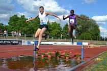 Velká cena Tábora v atletice 2015 - běh na 3000 metrů, v čele Estonec Kivistik, za ním pozdější vítěz Lekopa z JIhoafrické republiky.