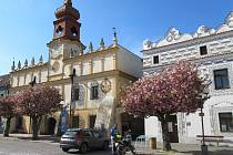 Od dubna do května již 28 let kvetou na náměstí TGM ve Veselí nad Lužnicí sakury.