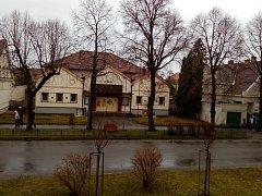Lípy v Libušině ulici v Bechyni.