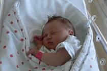 SOŇA SVATOŇOVÁ Z VLKOVA. Sestřička tříletého Patrika se narodila 19. prosince ve 2.30 hodin . Navážili jí 3220 g a naměřili 49 cm.
