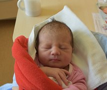 Leontínka Habichová z Hořepníku. Narodila se 18. dubna v 6.41 hodin. Vážila 2710 gramů, měřila 47 cm a doma už má sourozence Terezku (11) a Miloška (5).