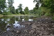 Pod jezem v Roudné na řece Lužnici je vody opravdu málo.