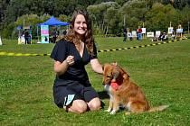 Táborská voříškiáda se konala v sobotu 21. září, užili si ji diváci, psi i jejich majitelé.