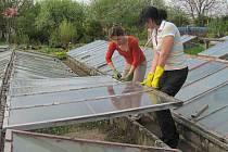 Posilování se skleníky.Denně otevřít okna skleníků není pro ženy zrovna snadné. Nazvedají při tom hodně kilogramů.