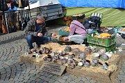 Sobotní Havelský trh na táborském Žižkově náměstí.