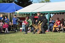 Kolem 400 dětí soutěžilo v sobotu 12. října v Hlavatcích v hasičském branném závodu.