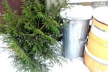 Stromky nedávejte do kontejneru, ale postavte k popelnici.