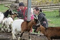Malá zoo i zahradní centrum v jednom. Petra Poslušná se podělila o zážitek.