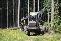 Táborská Správa lesů zápasí s rozepřemi.