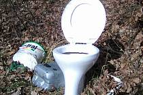 V lokalitě zvané Hůrky za Chýnovem ve směru na obec Kladruby při vjezdu do lesa za železničním viaduktem někdo vyhodil celou toaletní mísu.